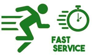 fast process server oak park ca